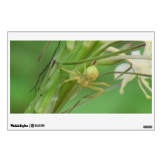 Kooskooskia Idaho Insects Arachnids Spiders Wall Decal