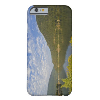 Kootenay Lake in Nelson British Columbia Barely There iPhone 6 Case