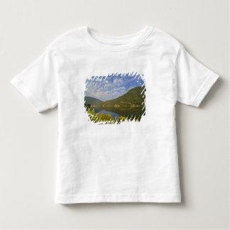 Kootenay Lake in Nelson British Columbia Toddler T-shirt