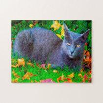 Korat Cats. Jigsaw Puzzle
