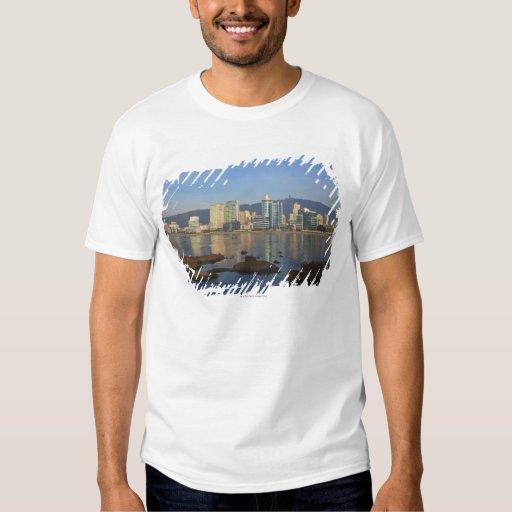 Korea, Gyeongsangnam-do, Busan, Gwangan beach T-Shirt