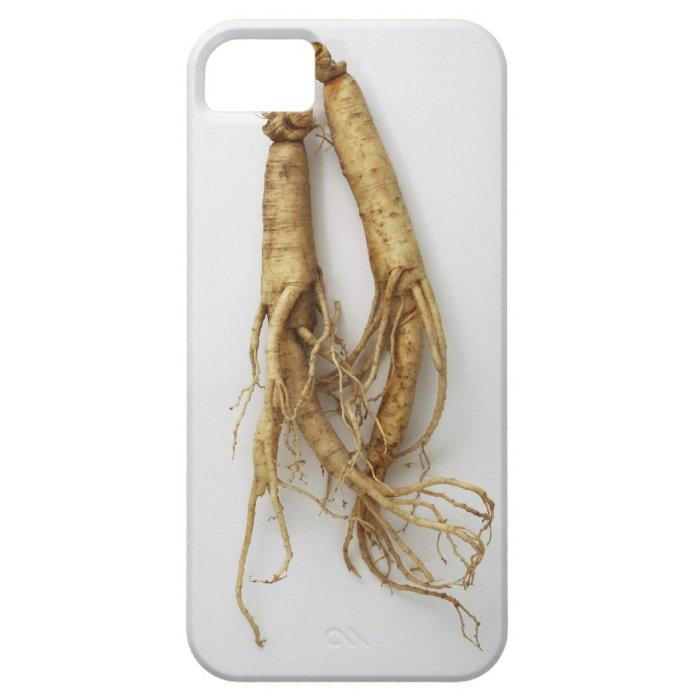 korean food,ginseng iPhone SE/5/5s case