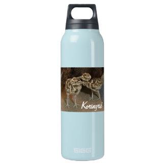 Kori Edamame H2O Insulated Water Bottle