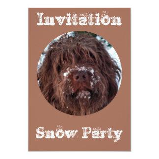 Korthals Griffon - Nevado Sarah Invitación 12,7 X 17,8 Cm