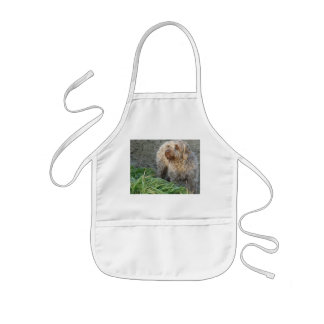 Korthals Griffon - Tsjip beautiful portrait Kids' Apron