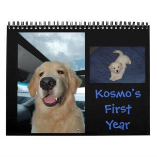 Kosmo's First Year Calendar