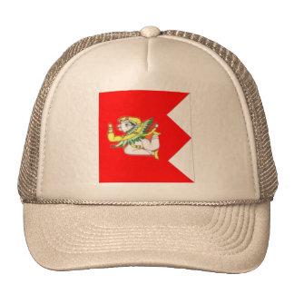 Kotah India Mesh Hats