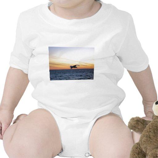 kotz de la puesta del sol de la gaviota trajes de bebé