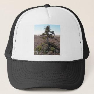 kotz shrub in alaska trucker hat