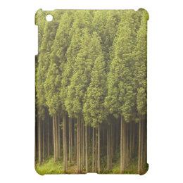 Koya Sugi Cedar Trees iPad Mini Cases
