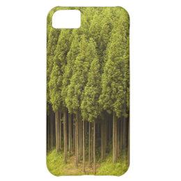 Koya Sugi Cedar Trees iPhone 5C Case