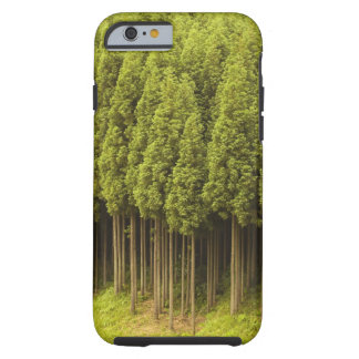 Koya Sugi Cedar Trees Tough iPhone 6 Case