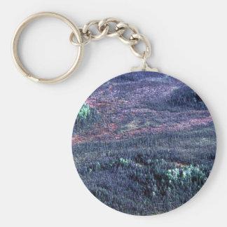 Koyukuk Refuge Spruce Forest Key Chains
