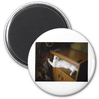 kozzmik 2 inch round magnet