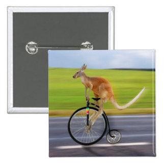 Krazy Kangaroo Pinback Button