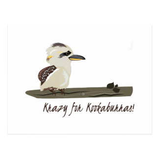 Krazy Kookaburras Postcard