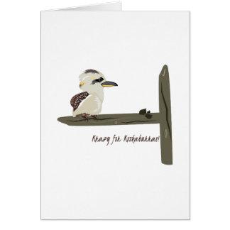 Krazy Kookaburras Felicitación