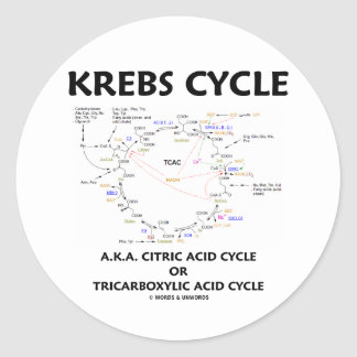 Krebs Cycle A.K.A. Citric Acid Cycle Tricarboxylic Classic Round Sticker