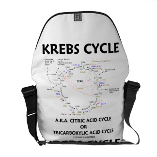 Krebs Cycle A.K.A. Citric Acid Cycle Tricarboxylic Messenger Bag