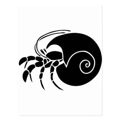 krebs einsiedler colono hermit crab snail postal