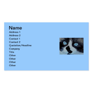 Kricket the Ragdoll Cat Business Cards