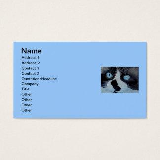 Kricket the Ragdoll Cat Business Card