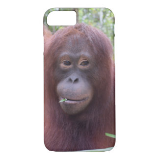 Krista Orangutan Borneo Rainforest Flirt iPhone 8/7 Case