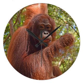 Krista Orangutan Brush Teeth Large Clock
