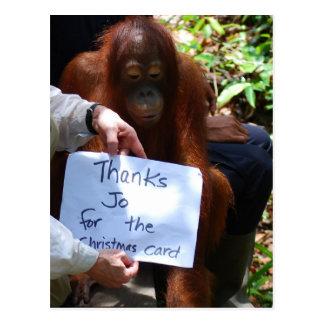 Krista Orangutan Christmas Thank You Postcards