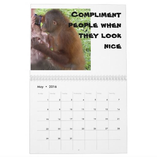 Krista Orangutan Important Lessons For Children Calendar