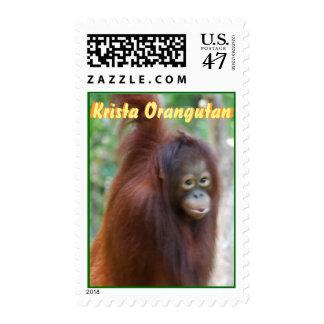 Krista Orangutan Jungle Ape Postage