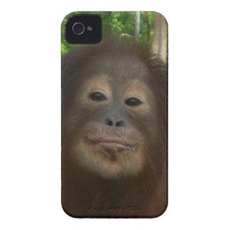 Krista Orangutan mugshot iPhone 4 Case