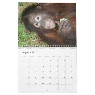 Krista Orangutan Orphan wildlife charity Calendar