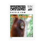 Krista Orangutan  postage stamp