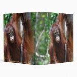Krista Orangutan school supplies Binder