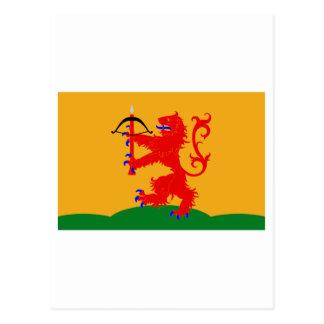Kronobergs län flag postcard
