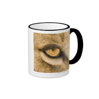 Kruger National Park, Limpopo Province, South Ringer Coffee Mug