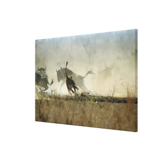 Kruger National Park, Mpumalanga Province, South 3 Canvas Print