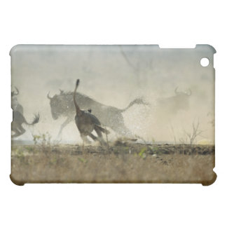 Kruger National Park, Mpumalanga Province, South 3 Cover For The iPad Mini