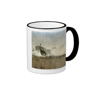 Kruger National Park, Mpumalanga Province, South 3 Ringer Coffee Mug
