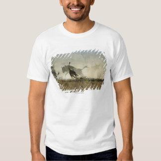 Kruger National Park, Mpumalanga Province, South 3 T-shirts