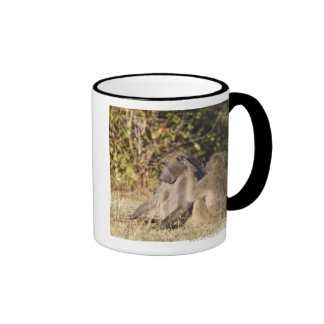 Kruger National Park, South Africa Ringer Coffee Mug