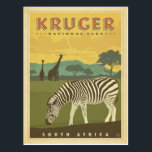 "Kruger National Park, South Africa | Zebras &amp; Gira Postcard<br><div class=""desc"">Anderson Design Group is an award-winning illustration and design firm in Nashville,  Tennessee. Founder Joel Anderson directs a team of talented artists to create original poster art that looks like classic vintage advertising prints from the 1920s to the 1960s.</div>"