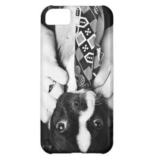 KRW Boston Terrier en un caso del iPhone 5 del laz