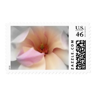 KRW Magnolia Wedding stamp