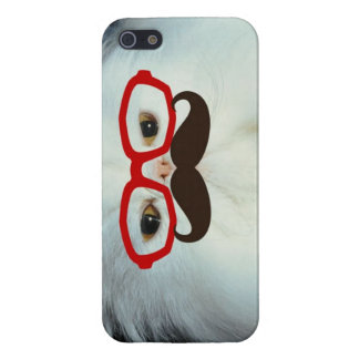 KRW Silly Kitty in Disguise iPhone 5 Case