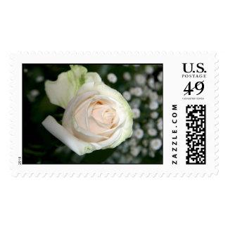 KRW Single White Rose Wedding Stamp