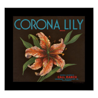 KRW Vintage Corona Lily Orange Crate Label Poster
