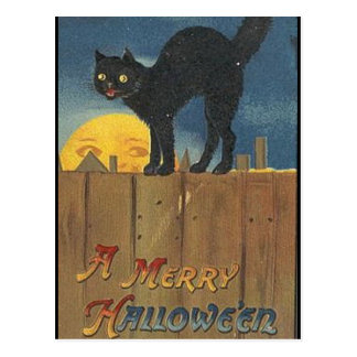 KRW Vintage Halloween Black Cat Postcard
