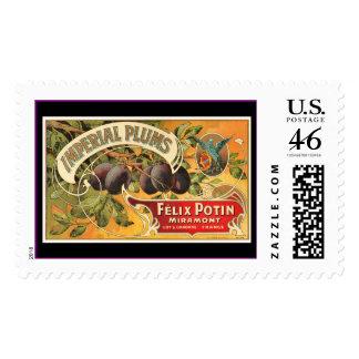 KRW Vintage Plum Fruit Crate Label Stamp